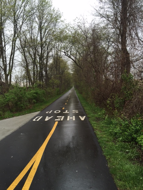 Rainy bike trail